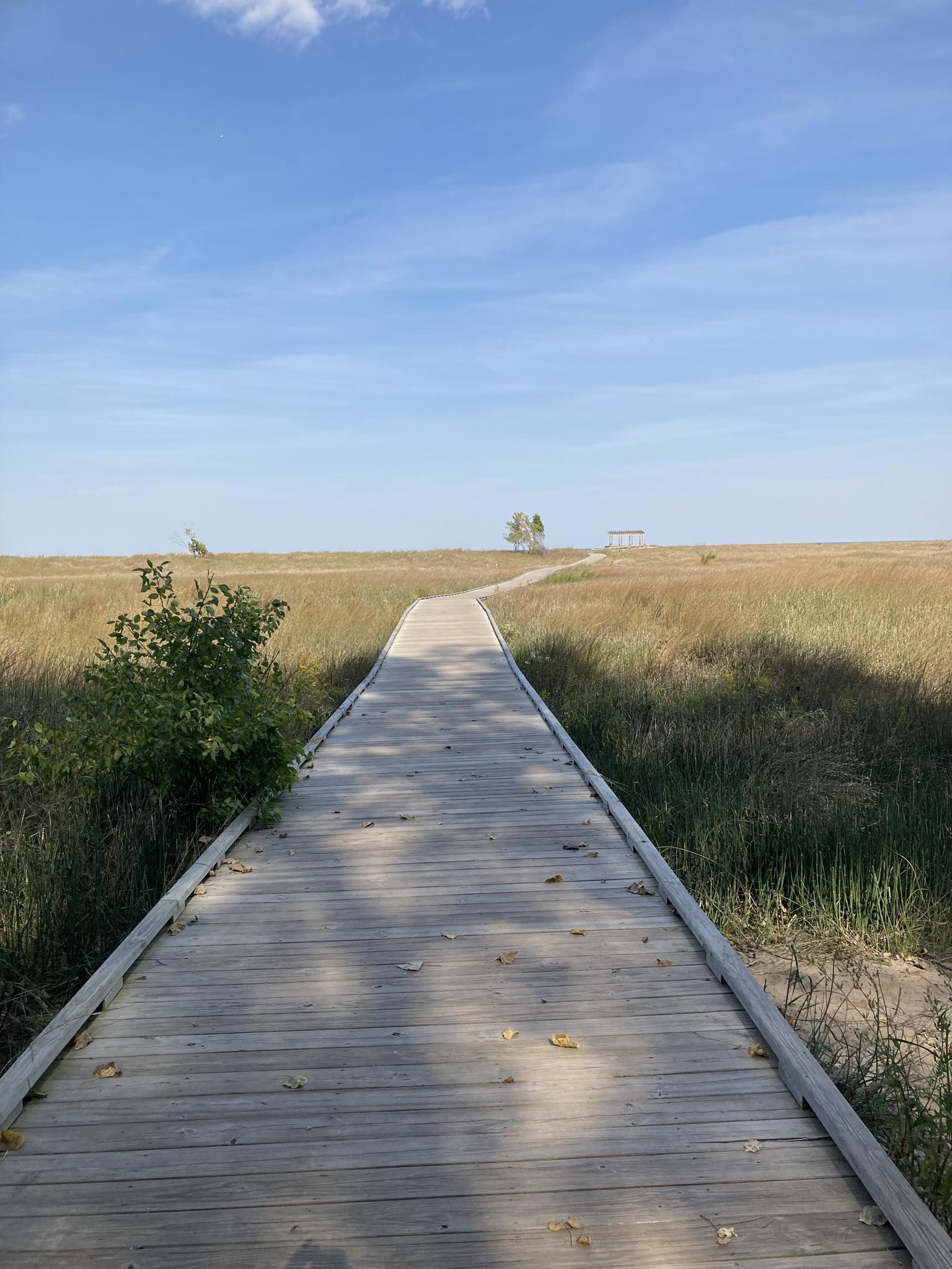 A Pleasure Walk